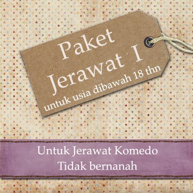 Paket Jerawat I
